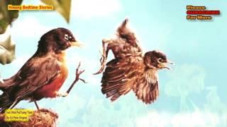 KevChim Tsis Muaj Hnub Ploj (The 2 Birds-Love Story)