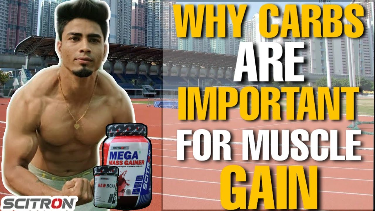 Why Carbs are Important for Muscle Gain | Explained - Complex & Simple Carbs @Fitness Fighters
