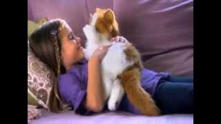 FUR REAL FRIENDS 89987 Интерактивная лежачая кошка LULU от магазина ДЕТКИ