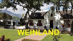 (12) Weinland Kapstadt / Südafrika