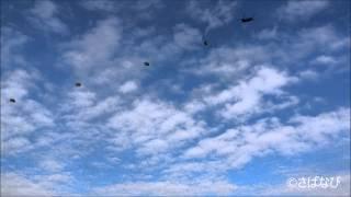 平成26年1月13日に千葉県の習志野演習場で行われた第一空挺団の「降下訓...