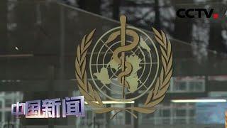 [中国新闻] 世卫组织:祝贺武汉重症病例清零 | 新冠肺炎疫情报道