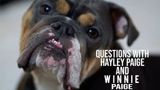 Q&A With Wedding Dress Designer Hayley Paige - Volume I