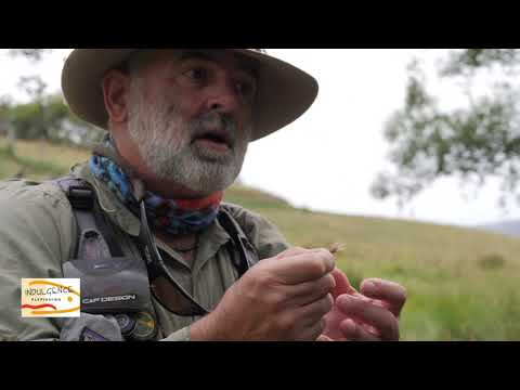 Short Line Fly Fishing With Scottie
