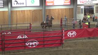 Soni Mortenson & Raise the Hard Times - Open Division at MN NBHA State Finals - Aug. 17, 2013