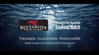Red Lobster Partners with Seafood Watch