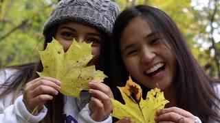 Fall in Winona