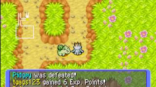 Pokemon Mystery Dungeon - Red Rescue Team - Tiny Woods - User video