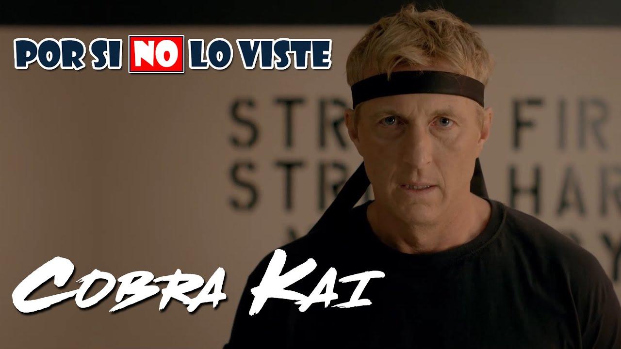Por si no lo viste: Cobra Kai (Temporada 1 y 2)