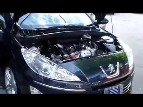 Peugeot Malaysia problem | FunnyDog TV