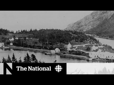 How the First World War destroyed a Newfoundland town