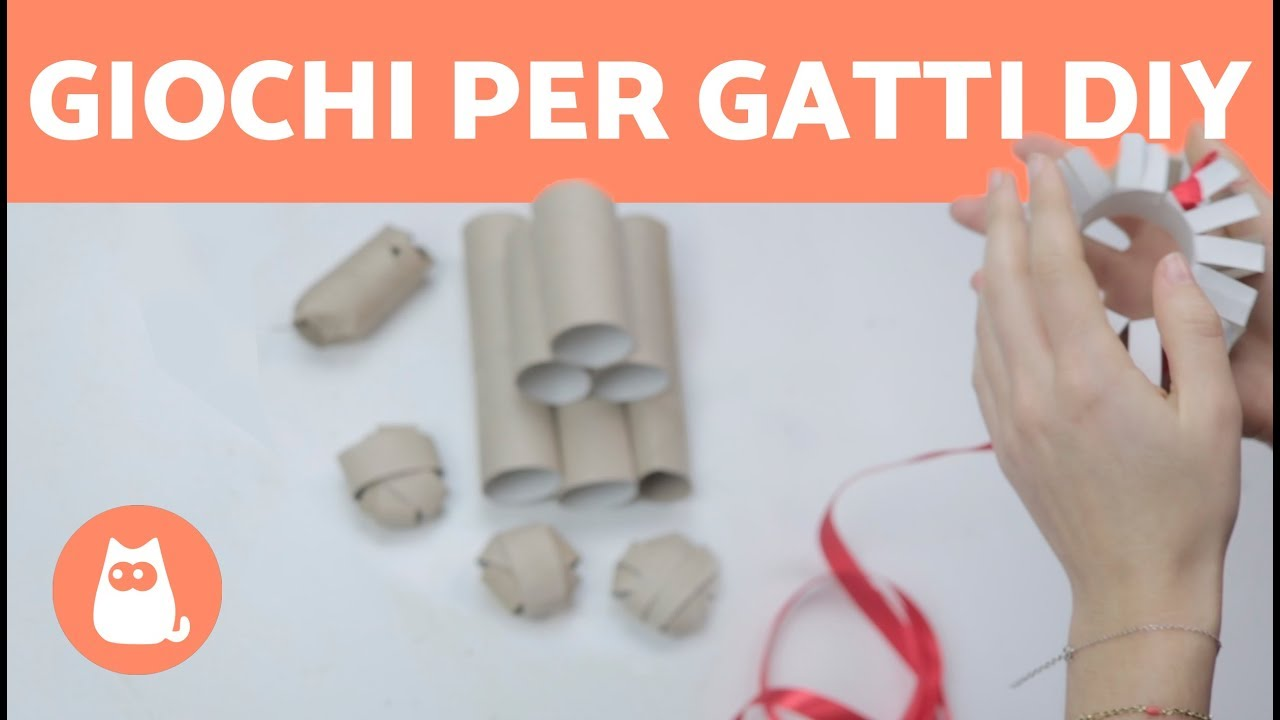 4 Giochi Per Gatti Fai Da Te Facili Riciclo Creativo Rotoli Di