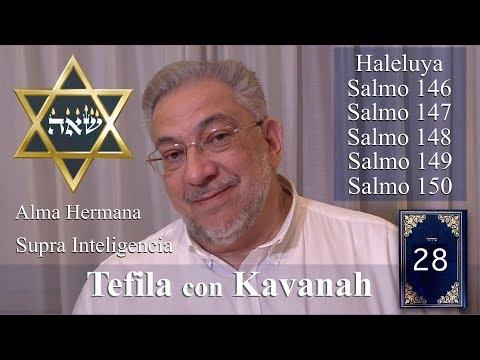 Kabbalah: la Tefila con Kavanah - clase 28 Salmos 146 a 150 (clase completa)