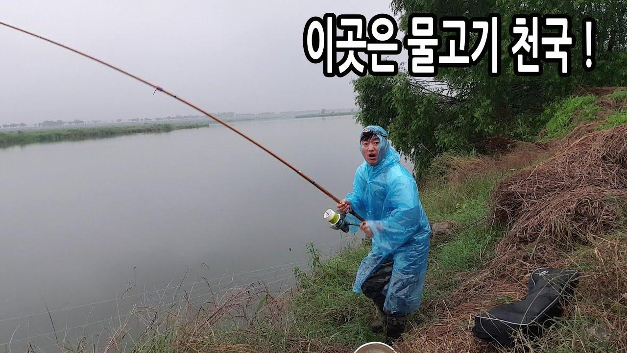 물고기 많기로 유명한 그곳 ! 이렇게 쉽게 잡는다고? 잡은 고기는 매운탕~ Spicy carp stew.