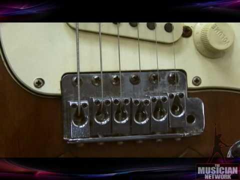 Stevie Ray Vaughan Guitar Lenny