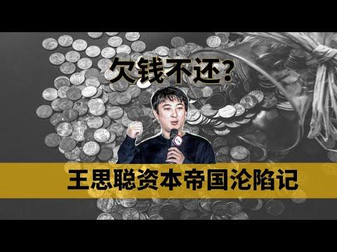 【中国商业史01】欠的不是1.5亿而是20亿,王思聪濒临破产其实另有隐情,揭秘国民老公背后的资本故事——冲浪普拉斯出品