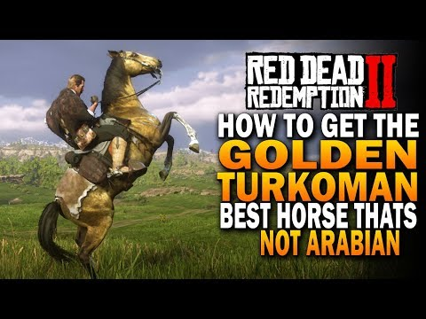 How To Get The Golden Turkoman! Best Horses That Arent Arabian! Red Dead Redemption 2 Horses [RDR2]
