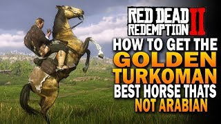 best horse