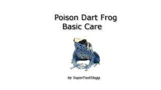 Poison Dart Frog Basic Care