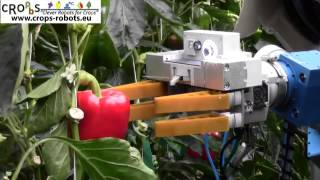 An Autonomous Harvesting Robot for Sweet-pepper in Greenhouses (Fin-Ray end-effector)