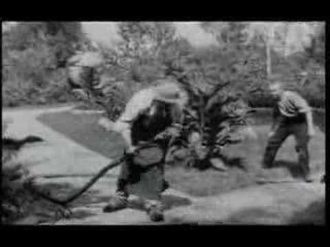 Louis & Auguste Lumière - L'arroseur arrose' - 1896