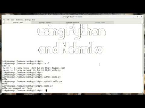 Network Automate - 03. Running Your Scripts