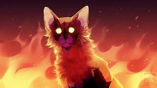 Коты Воители - Таблетки - Клип.