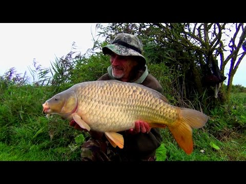 Nickolls Lake - Hythe 2015 Part One - Carp Fishing