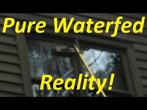 Pure Water Fed Reality!