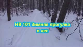 Как приготовить НВ 101-Стимулятор роста Зимняя прогулка