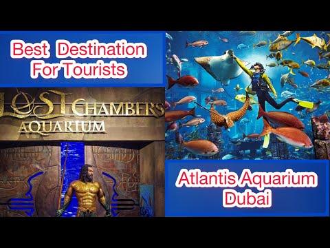 Atlantis The Palm, The Lost Chambers Aquarium, Dubai Trip UAE