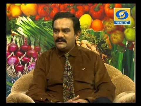 'Janavaranchi Pavsalyatil  Kalaji' _ 'जनावरांची पावसाळ्यातील काळजी'