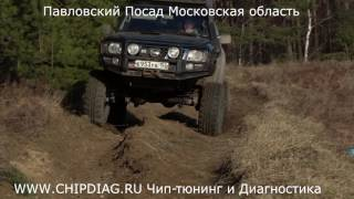 "Тест-Драйв (Лайт-ОффРоад) Nissan Patrol Y61   Simex 36"""