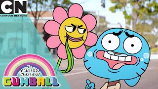 The Amazing World of Gumball | Gumball Gets Woke | Cartoon Network