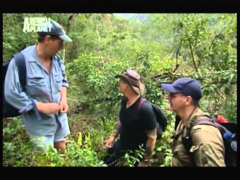 ANIMAL PLANET (Snake Buster -_- Valley of the giants)