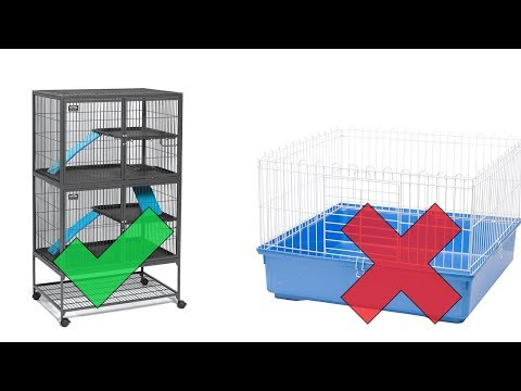 Ferret Cages: Buy These, NOT THOSE - Before You Buy A Ferret