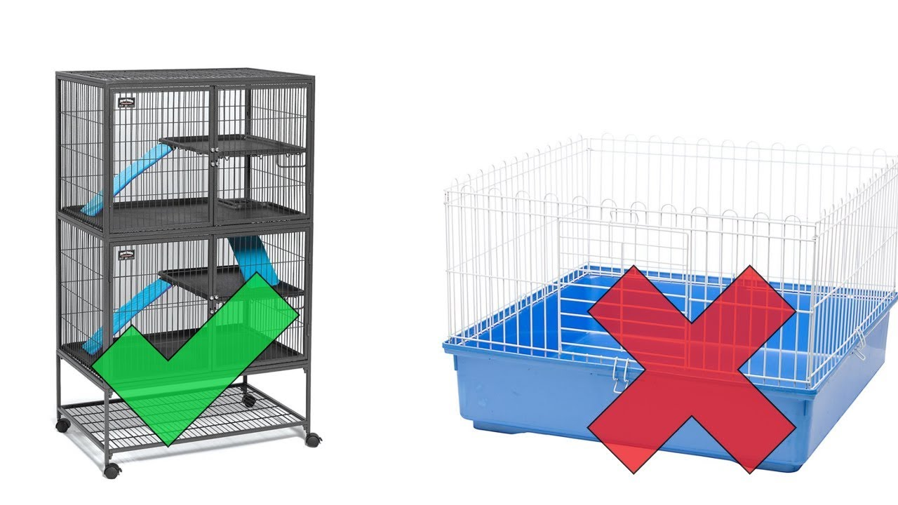 ferret cages buy these, not those before you buy a ferret youtubeferret cages buy these, not those before you buy a ferret