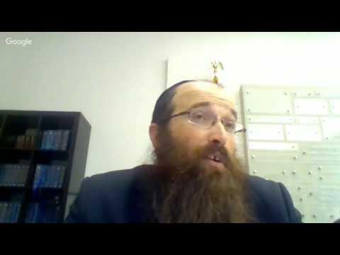 Halchot Relating to the Zika Virus