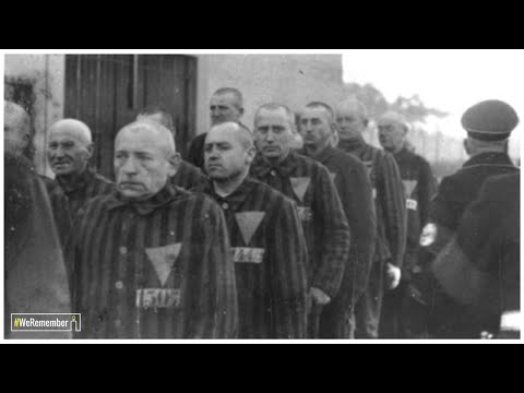 The pink triangle prisoners: The Nazis' persecution of homosexual men