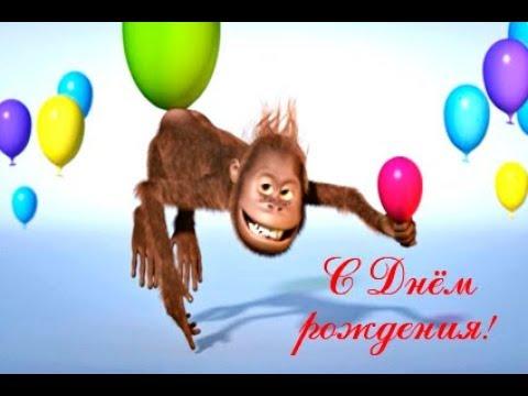 Веселый футаж Поздравление с днем рождения Скачать по ссылке в описании