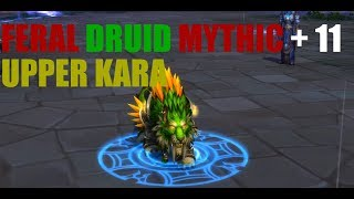 YES! FERAL DRUIDS CAN DPS: LEGION 7.3 FERAL DRUID