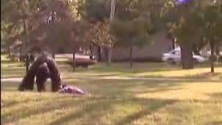 Crazed Gorilla Attacks Park Goer