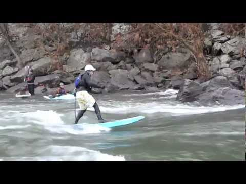Washington DC Paddleboard & Paddle Board Potomac River & Badfish 8'0""