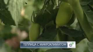 Теплица Царская Ферма [производитель Мостеплица.ru](, 2015-09-09T05:47:05.000Z)