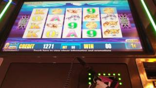 Buffalo Deluxe small win at Peppermill Reno