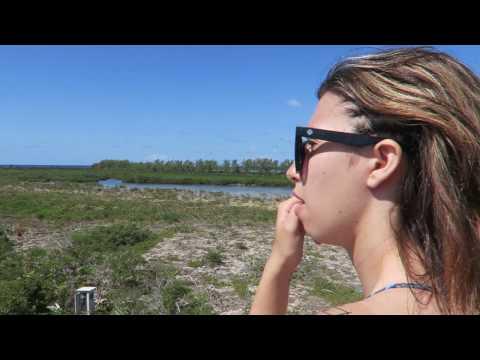 Canon GoPro Travel Jamaica Mexico Cayman Islands Disneyworld Spring Break