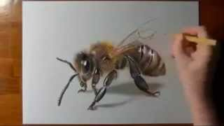 3D fantastic drawing pictures