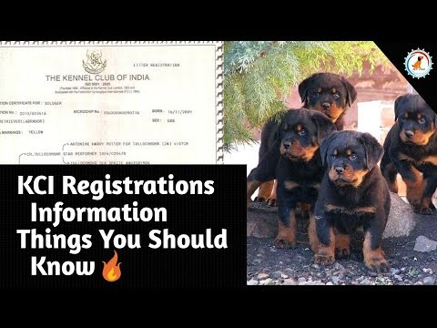 KCI Registration Information / KCI Papers and Dog Microchip / Kennel Club of India /At Mix