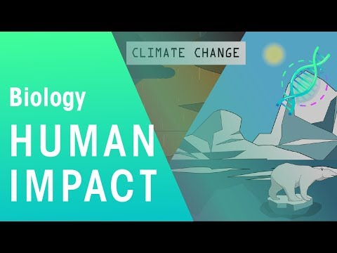 Human Impact | Environment | Biology | FuseSchool