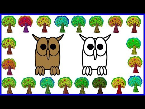 Learn to draw Owl With coloring Pages | Owl Drawing and Coloring For Kids thumbnail